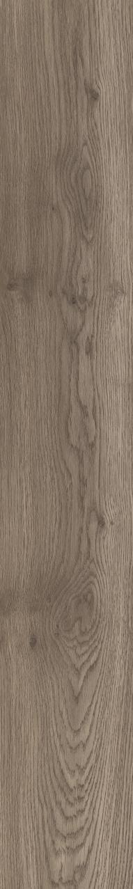 Moduleo Echo Oregon Oak 24852