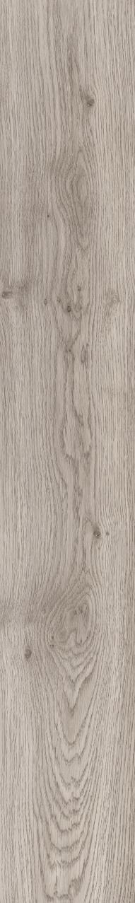 Moduleo Echo Oregon Oak 24914